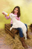 Feeding milk to a hungry little baby goat royalty free stock images