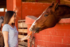 Feeding my horse some carrots. Cute girl feeding a horse during a equine therapy session in a ranch Stock Photos
