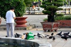 Feeding peigons, Ho Chi Minh City, VietNam Stock Photography