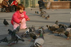 Feeding pigeons. Child feeding pigeons in urban scenery Royalty Free Stock Photography