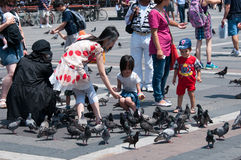Feeding the pigeons Stock Images