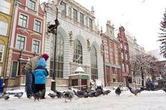 Feeding pigeons. Royalty Free Stock Photo