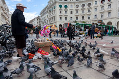 Feeding of pigeons in Aristotelous Square-Thessaloniki-Greece Stock Image