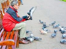 Feeding pigeons in Edinburgh: bird in the hand. Man feeding pigeons in Princes Street Gardens, Edinburgh. Bird is perched on the hand of a visitor to the Royalty Free Stock Photos