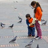 Feeding pigeons in Bogota Stock Photos