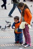 Feeding pigeons in Bogota Royalty Free Stock Images