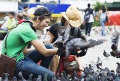 Feeding Pigeons in San Jose, Costa Rica Royalty Free Stock Photography