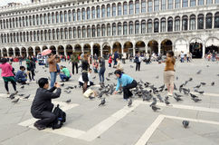 Feeding the pigeons at San Marco square Stock Photos