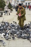 Feeding pigeons Royalty Free Stock Image