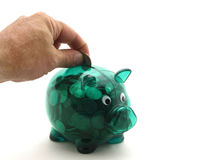 Feeding the piggy bank. Full green piggy bank with coin being inserted isolated on white Royalty Free Stock Photos