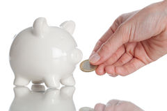 Feeding the Piggy Bank Royalty Free Stock Photos