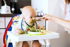 feeding Primer alimento sólido del bebé foto de archivo libre de regalías