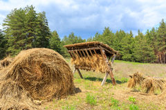Feeding-rack with dry hay for wild animal Royalty Free Stock Photos