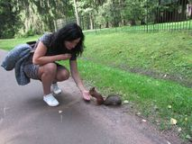 Feeding squirrels. Feeding proteins with the hands of a woman Royalty Free Stock Images