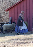 Feeding time on the farm. Pioneer woman feeding her sheep Royalty Free Stock Images