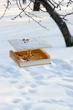 Feeding trough for birds. Care of birds in the winter-bird's of a feeding trough Stock Photo