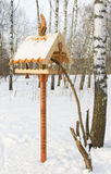 Feeding trough for birds Royalty Free Stock Images