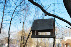 Feeding trough for birds on a tree Stock Photography