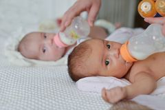 Feeding of twins stock photos