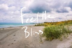 Feel The Bliss . Handwriting Motto On A photo. A photo from exotic sand beach with plants and the handwritten quote saying Feel The Bliss stock image