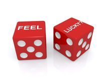 Feel lucky dice Stock Photos
