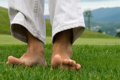 Feel the natural grass Stock Photography