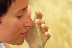 Feel and smell the wheat Stock Photography
