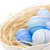 Feelin' light blue. Hand painted light blue Easter eggs arranged with natural hay on white background Stock Image