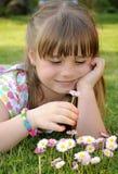 Feeling daisies Stock Photography