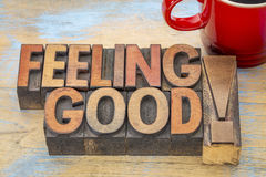 Feeling good phrase in wood type Royalty Free Stock Images