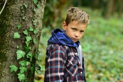 Feeling so hopeless. Sad boy. Small boy with sad face. Small child alone in woods. Lonely and unhappy.  royalty free stock photo