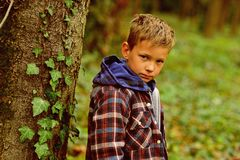 Feeling so hopeless. Sad boy. Small boy with sad face. Small child alone in woods. Lonely and unhappy.  royalty free stock photography