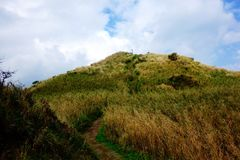 Feeling. A path to the top of the mountain Royalty Free Stock Photo