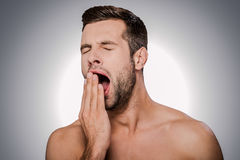 Feeling son bored. Portrait of bored young shirtless man covering mouth by hand and yawning while standing against grey background Stock Photos