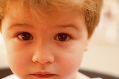 Feeling sorry. Little child with stylish haircut. Little child with short haircut. Small boy with blond hair. Healthy. Haircare tips for kids. Haircare products stock image