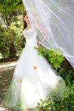 Feenhafte Braut stockfotos
