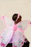 Feenhafte Flügel Lizenzfreie Stockbilder