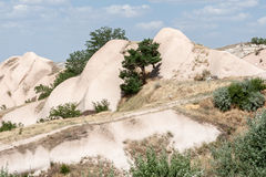 Feenhafte Kamine Cappadocia Stockfoto
