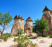 Feenhafte Kamine in Cappadocia Lizenzfreie Stockfotos