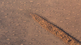 Feenhafte Kreise, Park Namib Naukluft, Namibia stockfotos