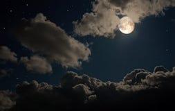 Feenhafte Nacht Lizenzfreies Stockbild