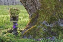 Feenhaftes Haus mit Moos nahe bei Baum-Stamm Stockfotografie
