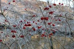 Feenhaftes Winter Schloss Wolfsburg, Deutschland lizenzfreie stockfotografie