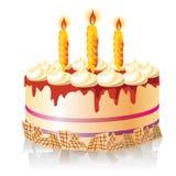 Feest cake Royalty-vrije Stock Afbeelding