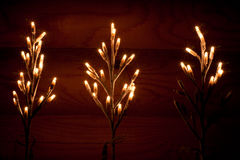 Feest licht Stock Afbeelding