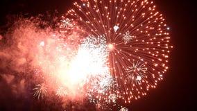 Feestelijk vuurwerk stock footage