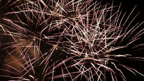 Feestelijk vuurwerk stock video