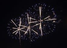 Feestelijk vuurwerk in de donkere nachthemel Stock Foto's