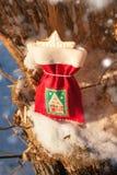 Feestelijke Kerstmiszak met peperkoekkoekje Stock Afbeeldingen