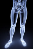 Feet. Male feet under the X-rays. 3d image Royalty Free Stock Photo